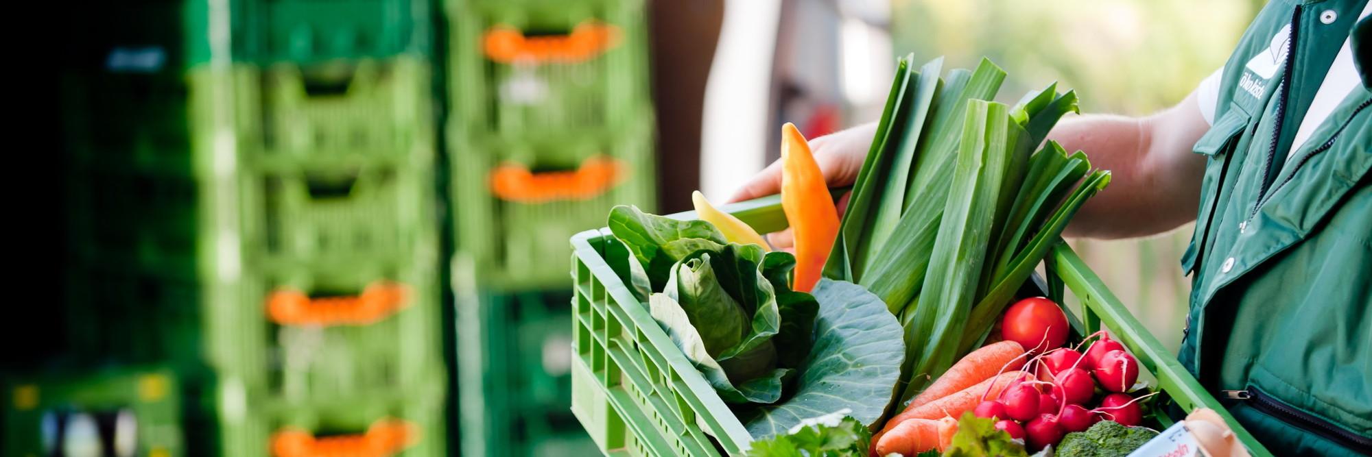 Eine grüne NAPF-Kiste voller Gemüse